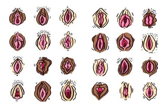 Μια καλλιτέχνης επαναπροσδιορίζει τα πρότυπα ομορφιάς των γεννητικών μας οργάνων