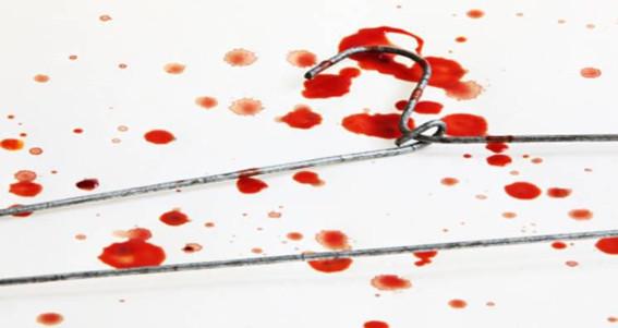 Έκτρωση: δικαίωμα ή χάρη;
